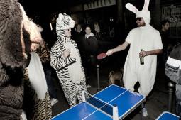 Pumos naktis @ (Loftas) Puma Social Club