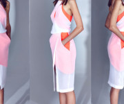 Kolekcija: Dion Lee Resort 2014