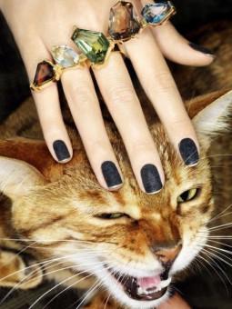 Rudeniui – žiedas, du ar net penki…