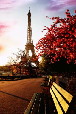 Kodėl Paryžiumi žavėtis madinga?