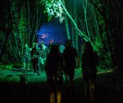 """""""Tundra"""" – vienuoliktasis festivalis žada vidurvasario stebuklą"""