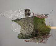 Menininkės Anastasijos Sosunovos paroda Kogo galerijoje