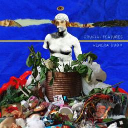 """Crucial Features"" pristato vizualų albumą ""Venera Budo"""