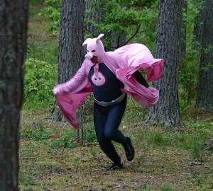 myspaceantics.compink-pig-fairy
