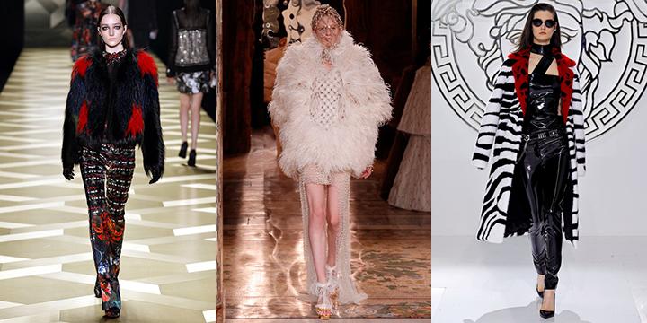 Roberto Cavalli, Alexander  McQueen,  Versace