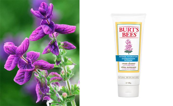 """""""Burt's Bees Intense Hydration"""" prausiklis"""