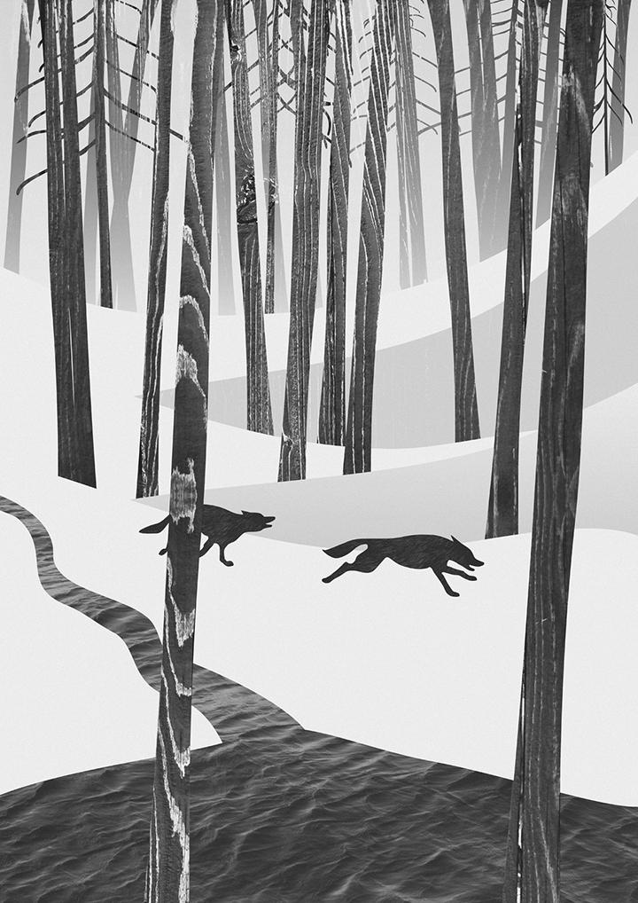 Iliustracija Martwood Wolves