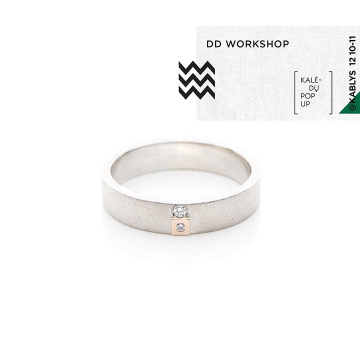 DD workshop