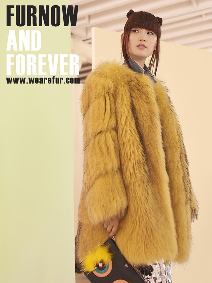 ASIAN fur