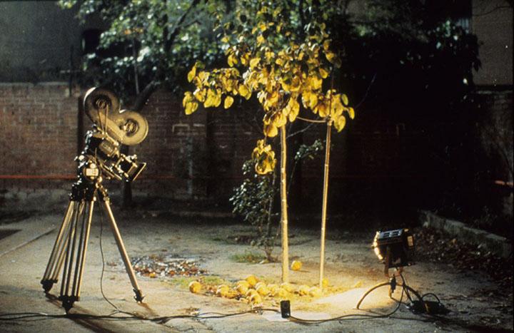 Rudeniškas Victoro Erice filmas apie dailininko akistatą su laiku